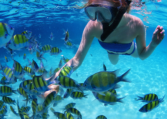 Hilda feeding the fish in the Cozumel waters.